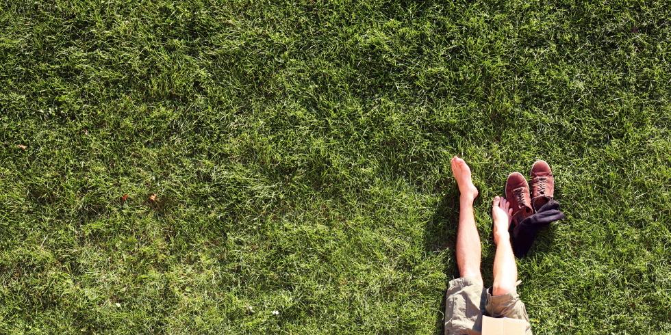 Es grünt so grün – Urban Gardening