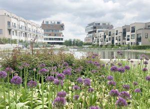 Nachhaltig: Mensch und Natur fühlen sich wohl im Quartier. Foto: Branko Batinic