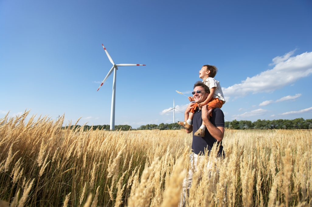 What is eco-electricity? Renewable energy opportunities
