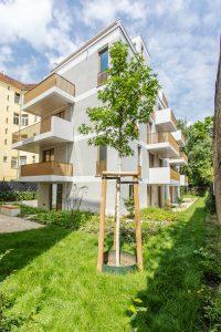 BUWOG Wohnungsneubau mit Grünfläche